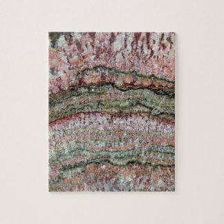 Fossilized Stromatolites Jigsaw Puzzle
