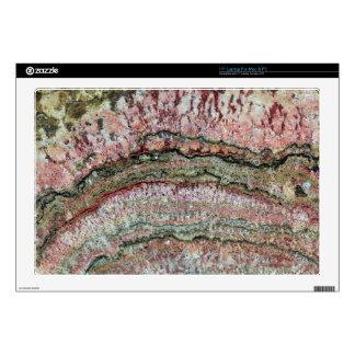 Fossilized Stromatolites Skin For Laptop