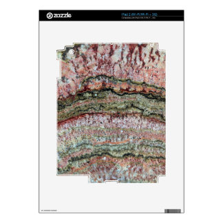 Fossilized Stromatolites Skins For iPad 2