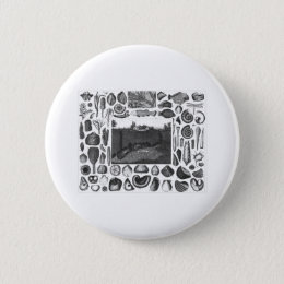 FOSSILS BUTTON