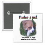 Foster a pet pinback button