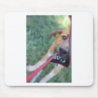 Foster Dog Tug of War Mouse Pad