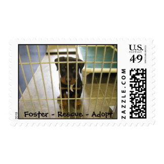 Foster - Rescue - Adopt Stamps