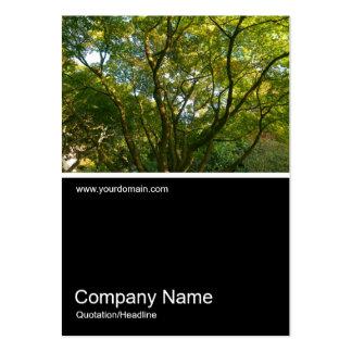 Foto 0289 de Half&Half - ramas 06 del japonés Tarjetas De Visita Grandes