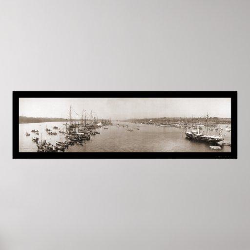 Foto 1905 de la regata de Harvard Yale Impresiones