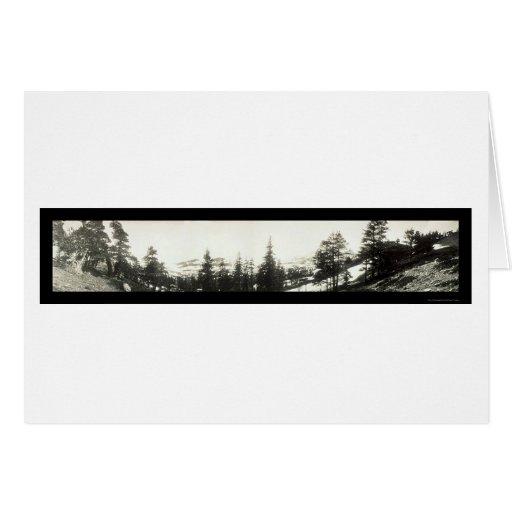 Foto 1906 de Tahoe del rastro del Mt Tallac Tarjeta De Felicitación