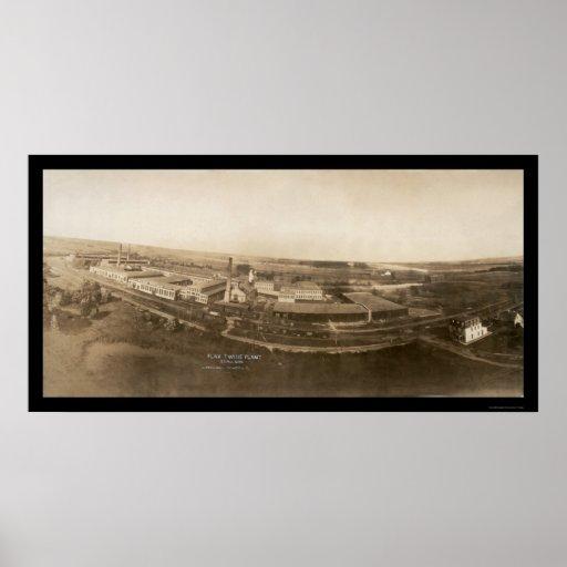 Foto 1907 de la planta de la guita del manganeso d posters