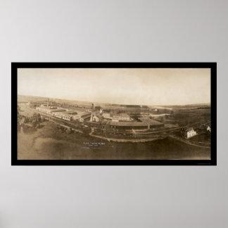Foto 1907 de la planta de la guita del manganeso d póster