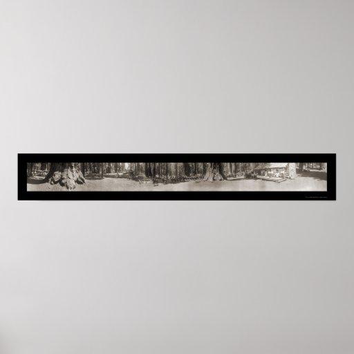 Foto 1908 de los guardabosques de Mariposa Yosemit Impresiones