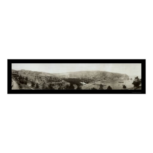 Foto 1910 de Avalon, isla de CA Catalina Póster