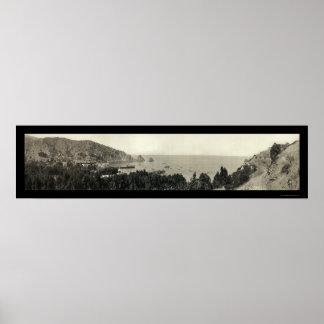 Foto 1911 de la isla de Avalon Catalina Póster