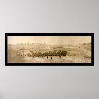 Foto 1918 de Sevier del campo de la formación Posters