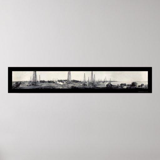 Foto 1919 de la cala TX del ganso del aceite Poster