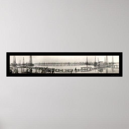Foto 1919 del aceite de la cala TX del ganso Poster