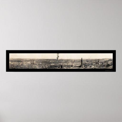 Foto 1919 del guardabosques TX de los campos petro Poster
