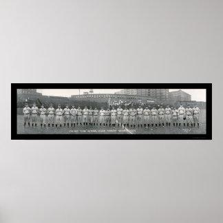 Foto 1929 de los campeones de los Chicago Cubs Posters