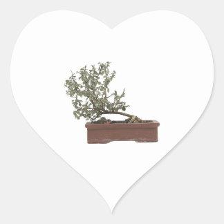 Foto 1 de los bonsais pegatina en forma de corazón