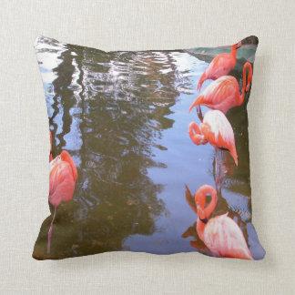 Foto 23-Flamingos del pájaro Almohadas