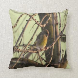 foto 2 del pájaro almohada
