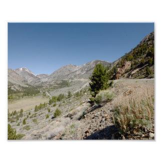 Foto 5/13 de las montañas de DSC 3913 Yosemite