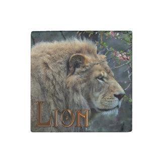 Foto africana masculina de la fauna del león del imán de piedra