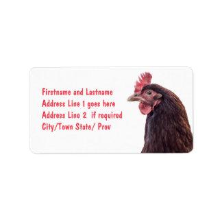 Foto alta del perfil de la gallina roja de la capa etiquetas de dirección