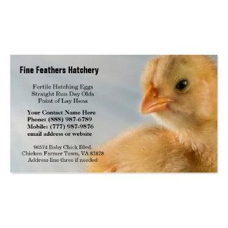 Foto amarilla adorablemente linda del polluelo del tarjeta de visita