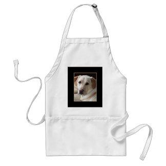 Foto amarilla del perro del labrador retriever en delantal