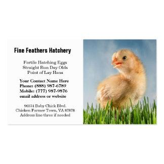 Foto amarilla linda del polluelo del bebé tarjetas de negocios