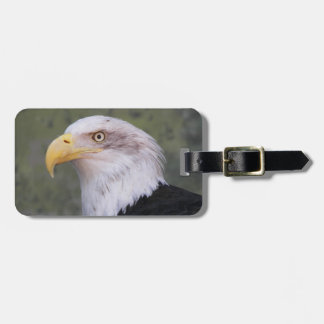 Foto americana de Eagle calvo Etiqueta Para Equipaje