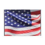 Foto americana de la bandera de los E.E.U.U. de la iPad Mini Cárcasas