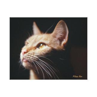 Foto anaranjada de la lona del gato de Tabby Impresión En Lona