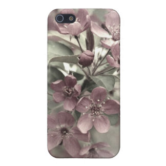Foto antigua Crabapples en la floración iPhone 5 Fundas