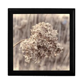 Foto antigua de la flor cajas de regalo