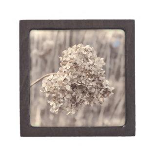 Foto antigua de la flor caja de joyas de calidad