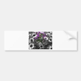 Foto artística con flores