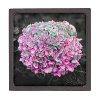 Foto ascendente cercana de la flor caja de recuerdo de calidad