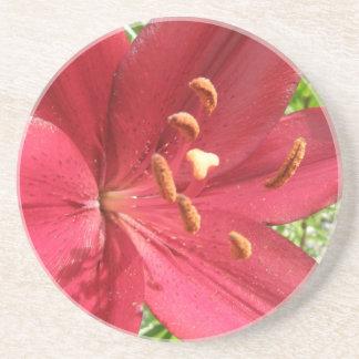 Foto asiática roja del lirio posavasos personalizados