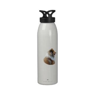 Foto áspera del retrato del perro del collie botellas de agua reutilizables