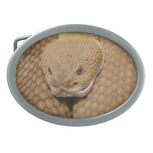 Foto asustadiza de la serpiente de cascabel hebilla cinturon oval