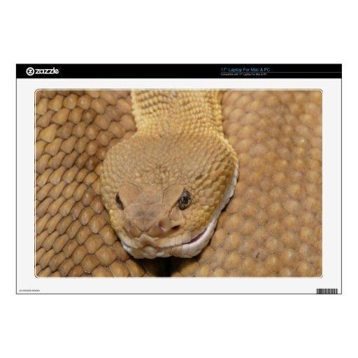 Foto asustadiza de la serpiente de cascabel portátil calcomanía
