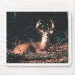 Foto atada blanco del dólar de los ciervos tapete de ratón