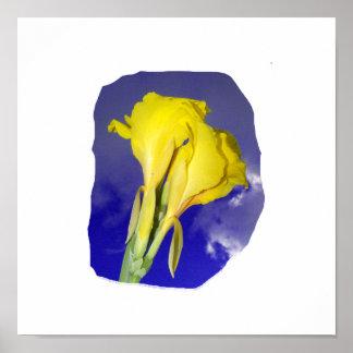 Foto azul marino del cielo de dos flores amarillas poster