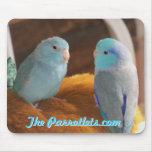 Foto azul pacífica del cojín de ratón de los pájar tapetes de ratón