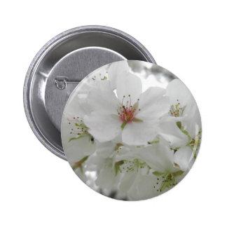 Foto blanca de las flores de cerezo pin redondo de 2 pulgadas