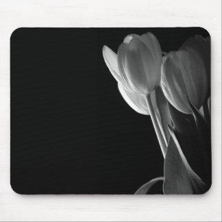 Foto blanca de los tulipanes en fondo negro alfombrillas de raton