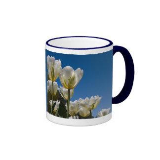 Foto blanca de los tulipanes taza a dos colores