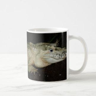 Foto blanca del cocodrilo del albino, imagen del c taza de café