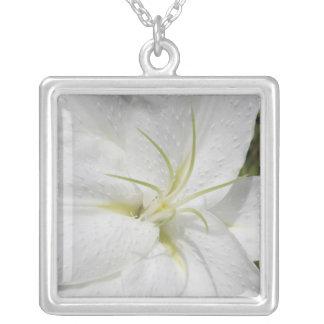 Foto blanca elegante del lirio de pascua collar plateado