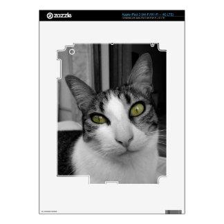 Foto blanca negra del gato iPad 3 skin